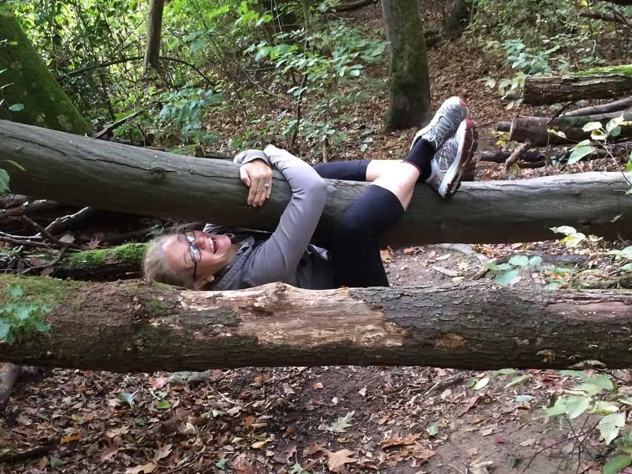 Szene im Wald